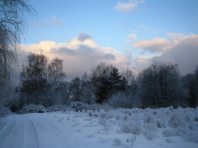 Wintermorgen 2
