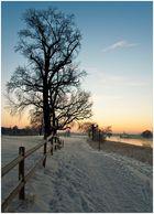 Wintermorgen am Elbufer
