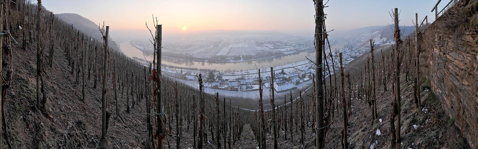 ... wintermorgen an der mosel ...
