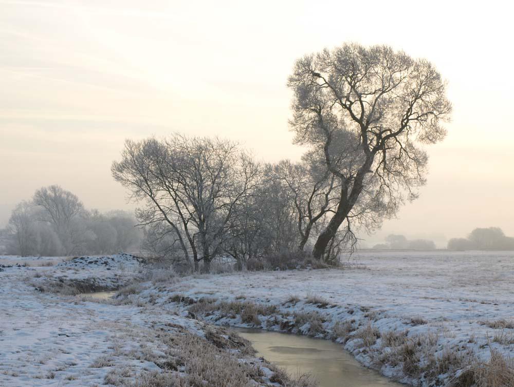 Wintermorgen an der Schwalm