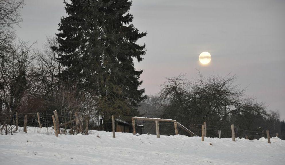 Wintermorgen.....