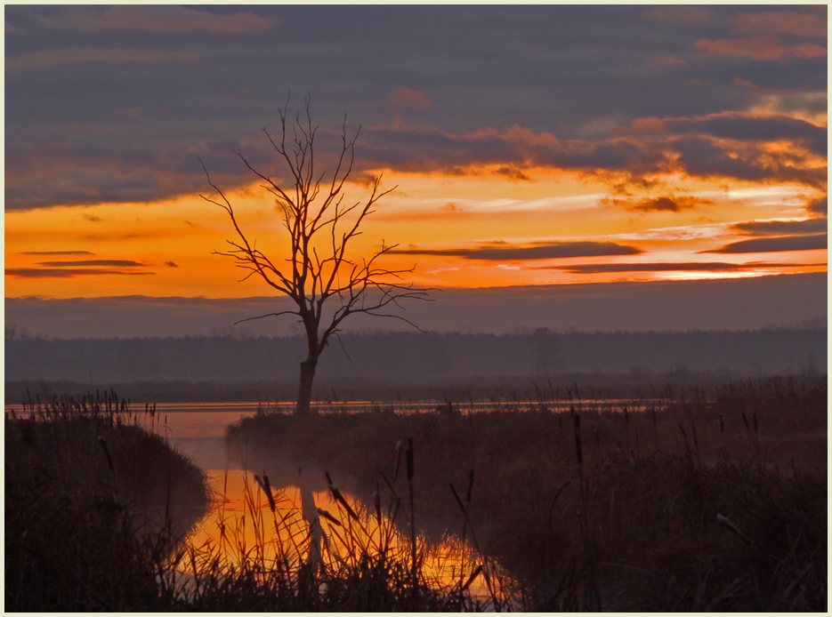 Wintermorgen, die Sonne strahlt die Wolken an.......