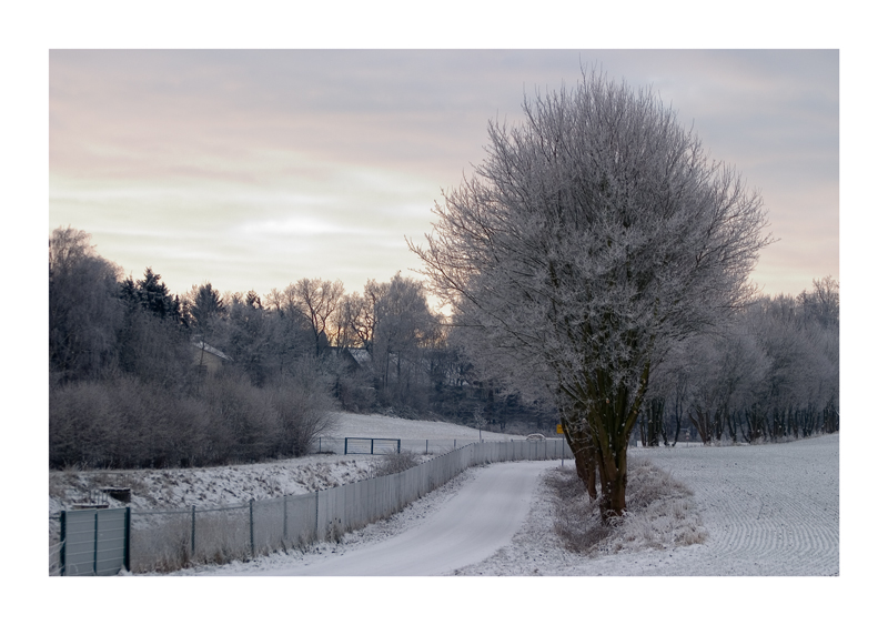 - Wintermorgen -