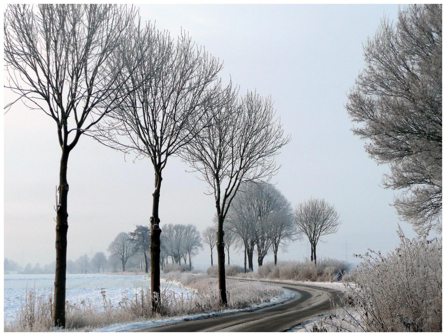 Wintermorgen im Erftkreis