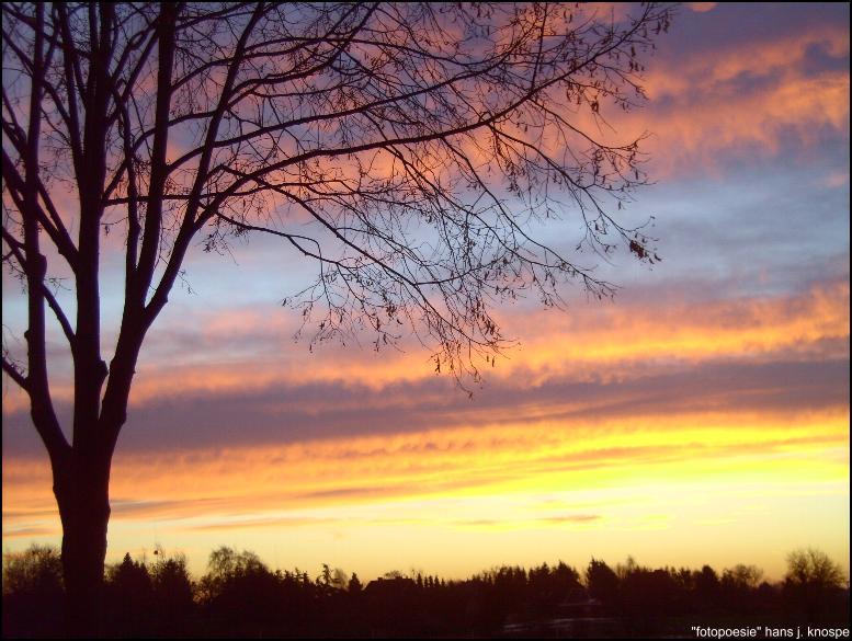 Wintermorgen im Januar vor Sonnenaufgang in Damlos in Ostholstein