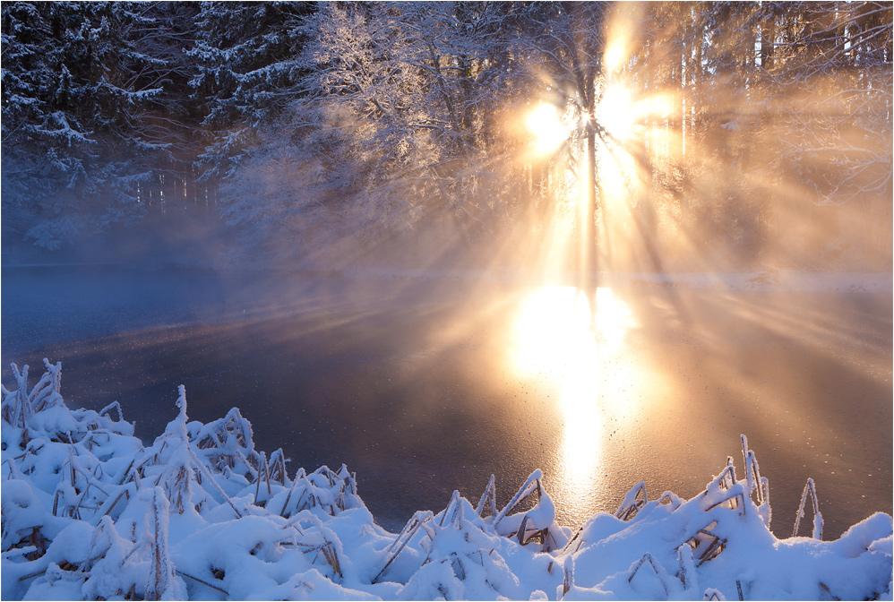 wintermorgen im ostallgäu
