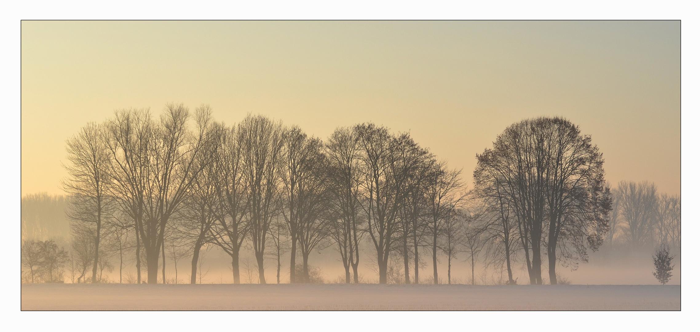 Wintermorgen im Wurmtal