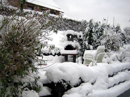 Wintermorgen in Alferzhagen