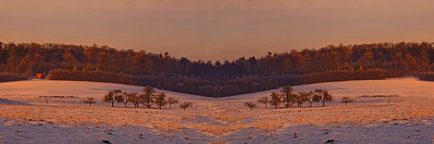 Wintermorgen.2