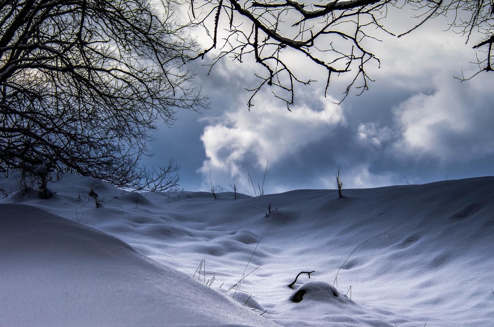 Wintermystik