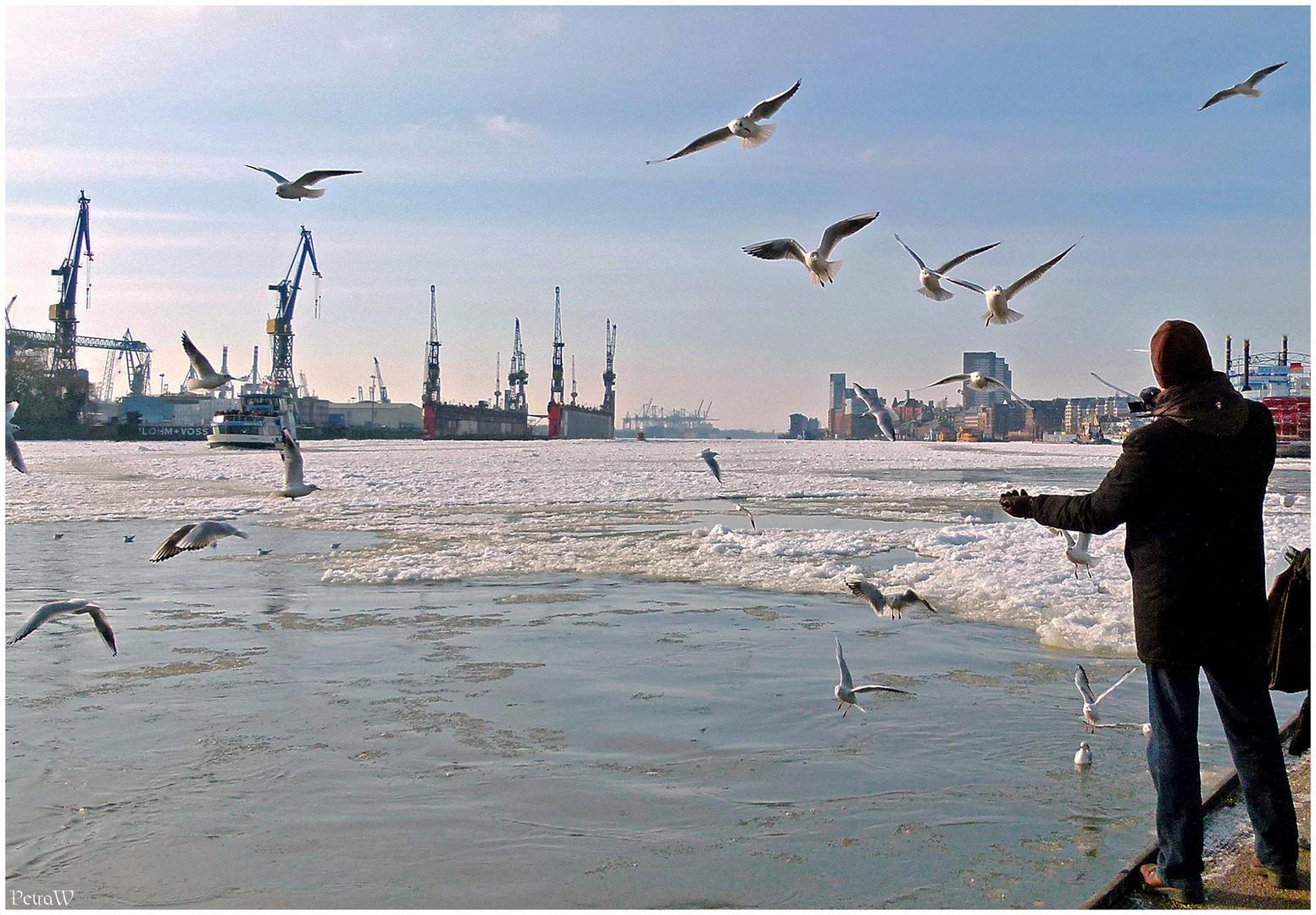 Winternachlese im Hamburger Hafen 3