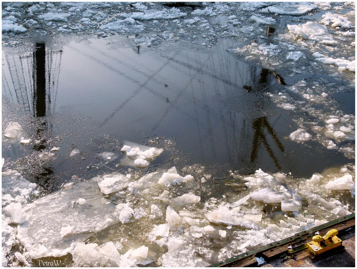 Winternachlese im Hamburger Hafen 5