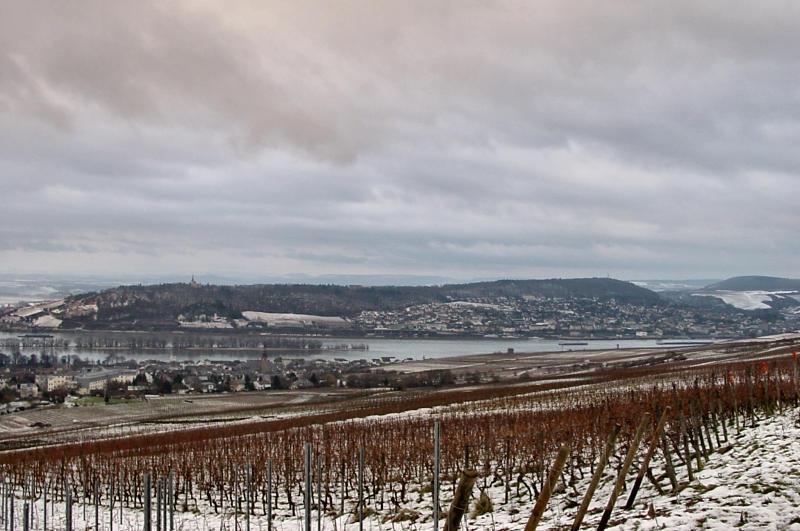 Winternachmittag im Rheingau