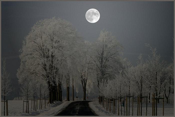 Winternacht - ... oder nur eine Illusion ?
