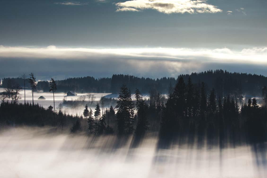 Winternebel im Allgäu