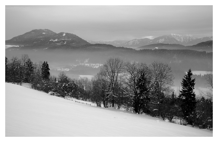 Winternebel - Nebelwinter