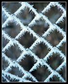 Winternostalgie (3)