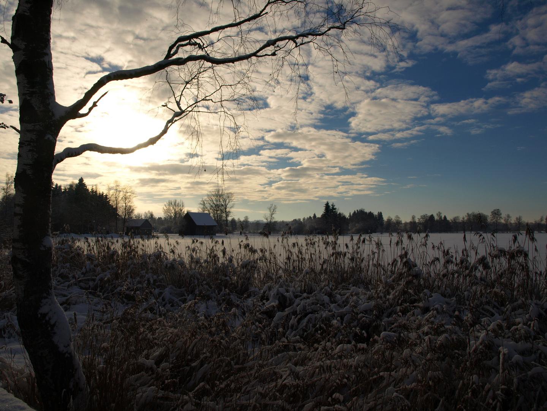 Winter....nu hab ich genug davon!!