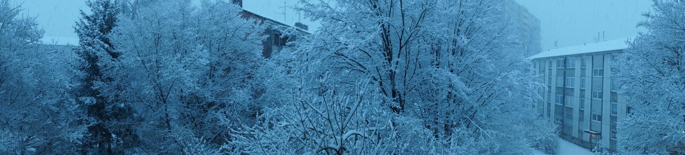 Winterpanora