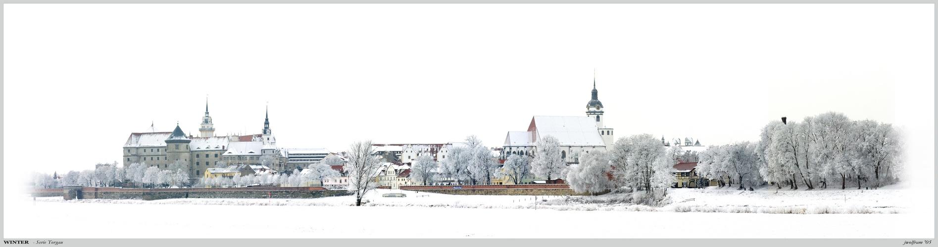 Winterpanorama Torgau