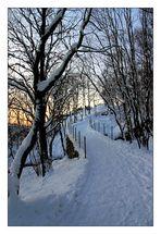 Winterpfad .II.