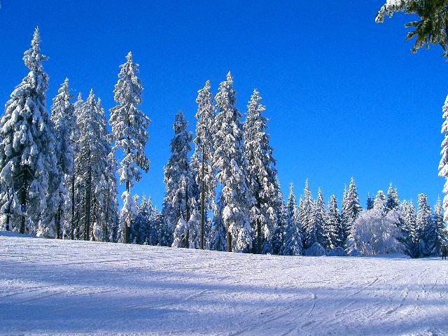 Winterpiste
