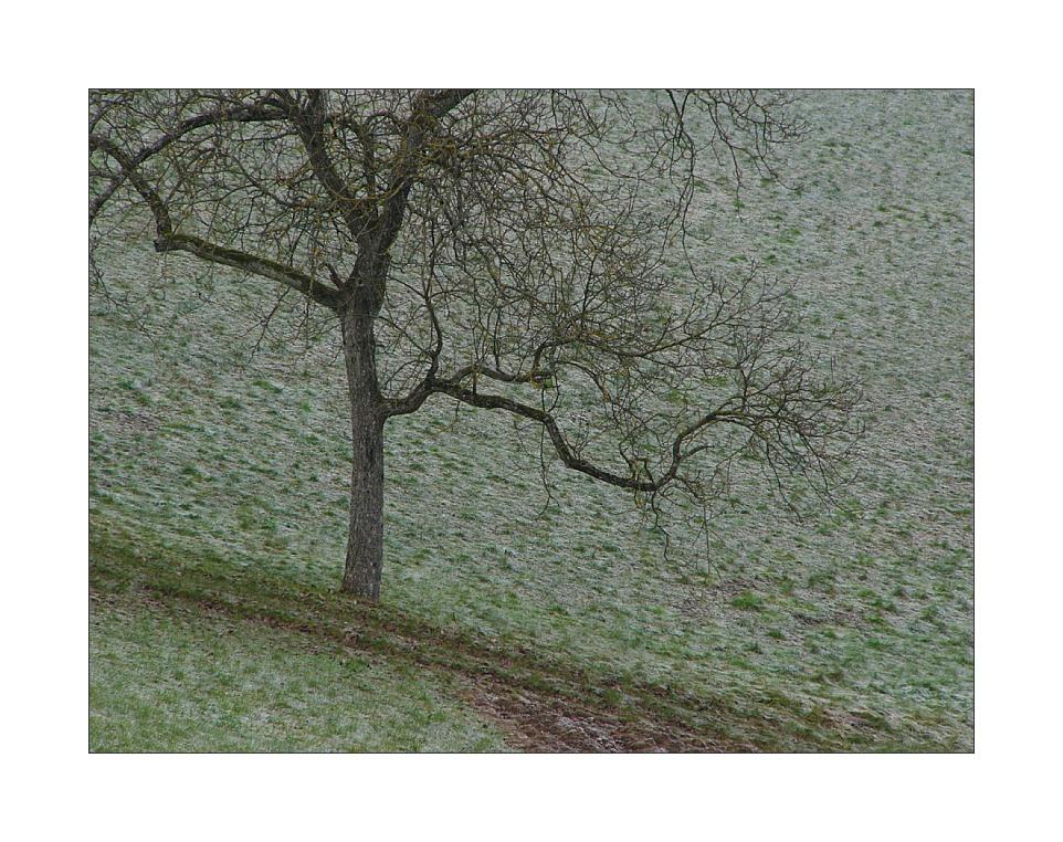 Winterpoesie