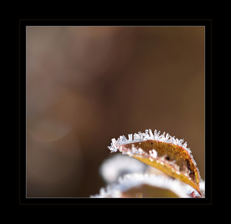 WinterReflektionen II