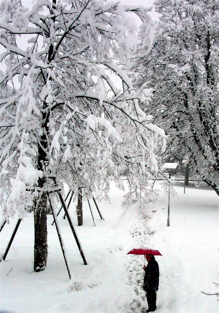 Winterregen