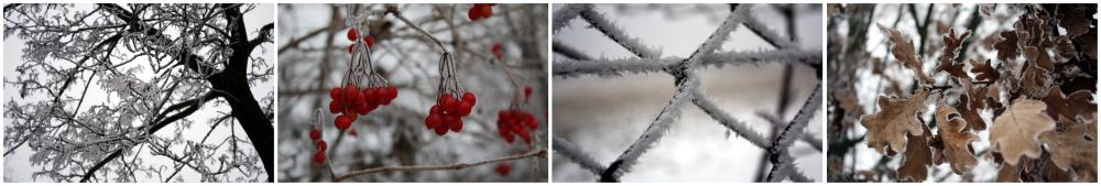 Winterreihe