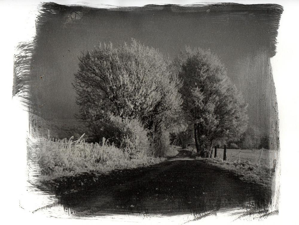 Winterreise-2