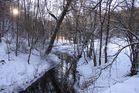 Winterreise durchs Eschweilertal
