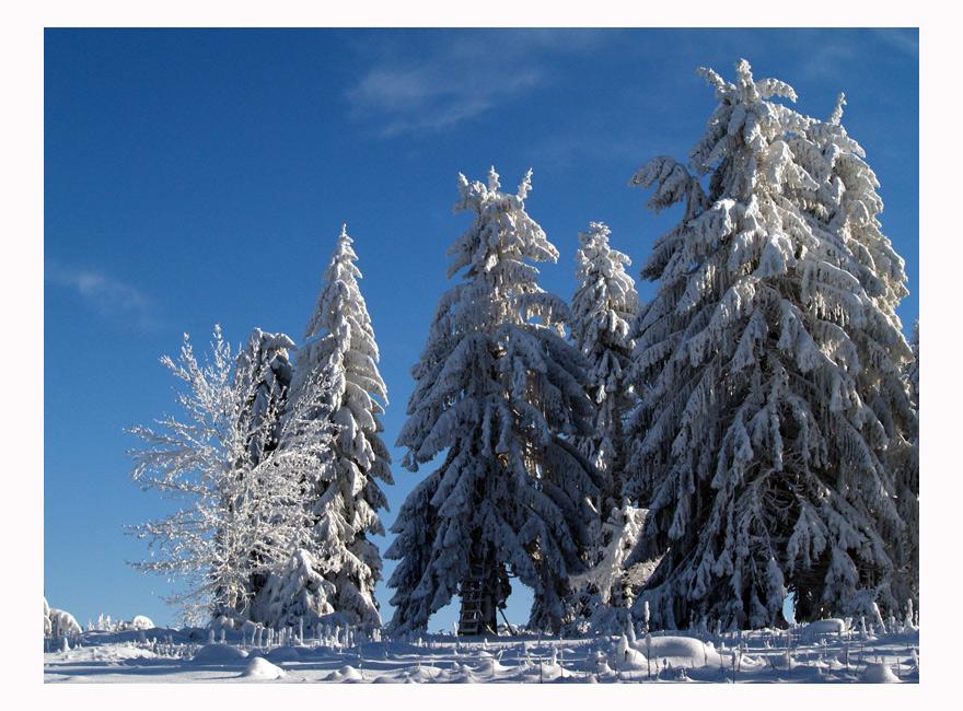 ~Winterruhe~