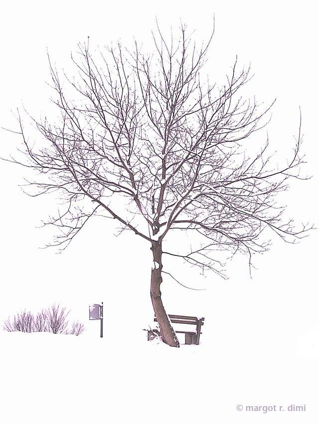 winterruhe.