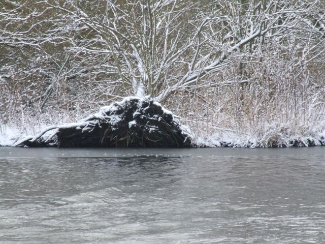 Winterruhe am See 8