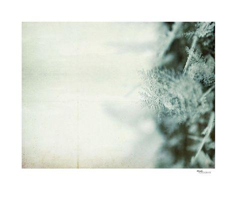 .winterseele.