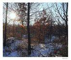 wintersonne (1)