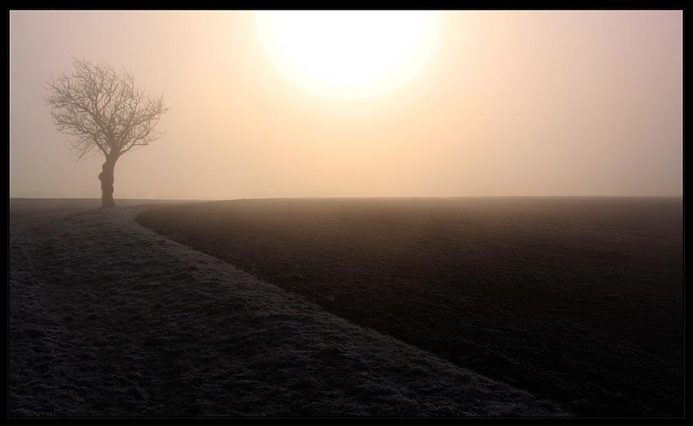 *\' ° | Wintersonne [2]