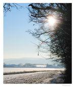 wintersonne (3)