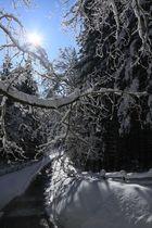 Wintersonne bei -12°C