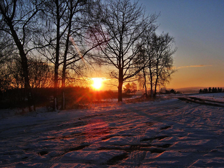 Wintersonne im Februar