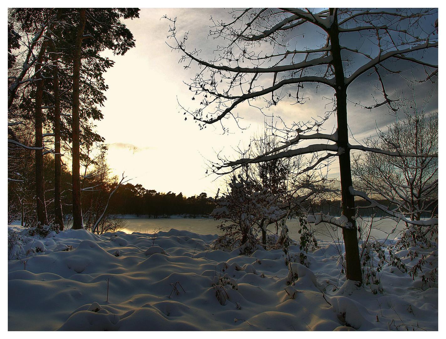 Wintersonne2