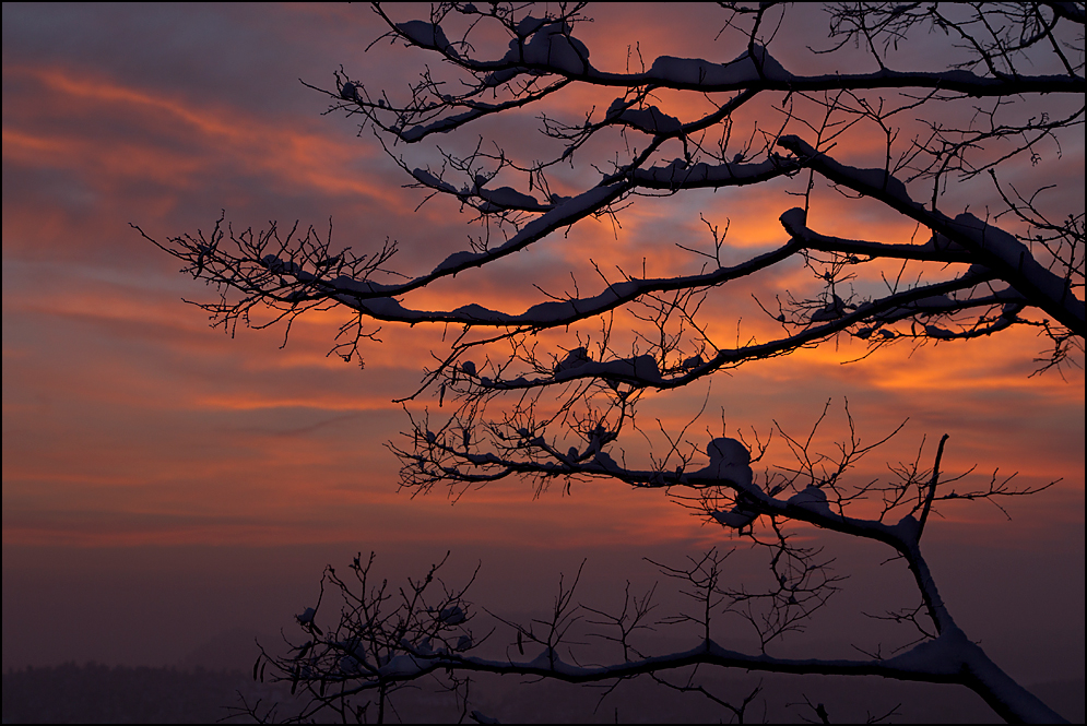 Wintersonnenuntergang...