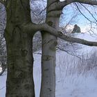 Winterspaziegang 6