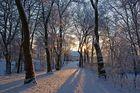 Winterspaziergang, 05.01.09 – 01