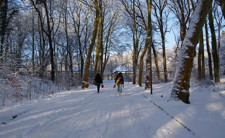 Winterspaziergang, 05.01.09 – 30