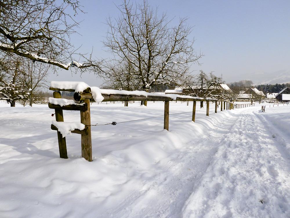 Winterspaziergang (1)