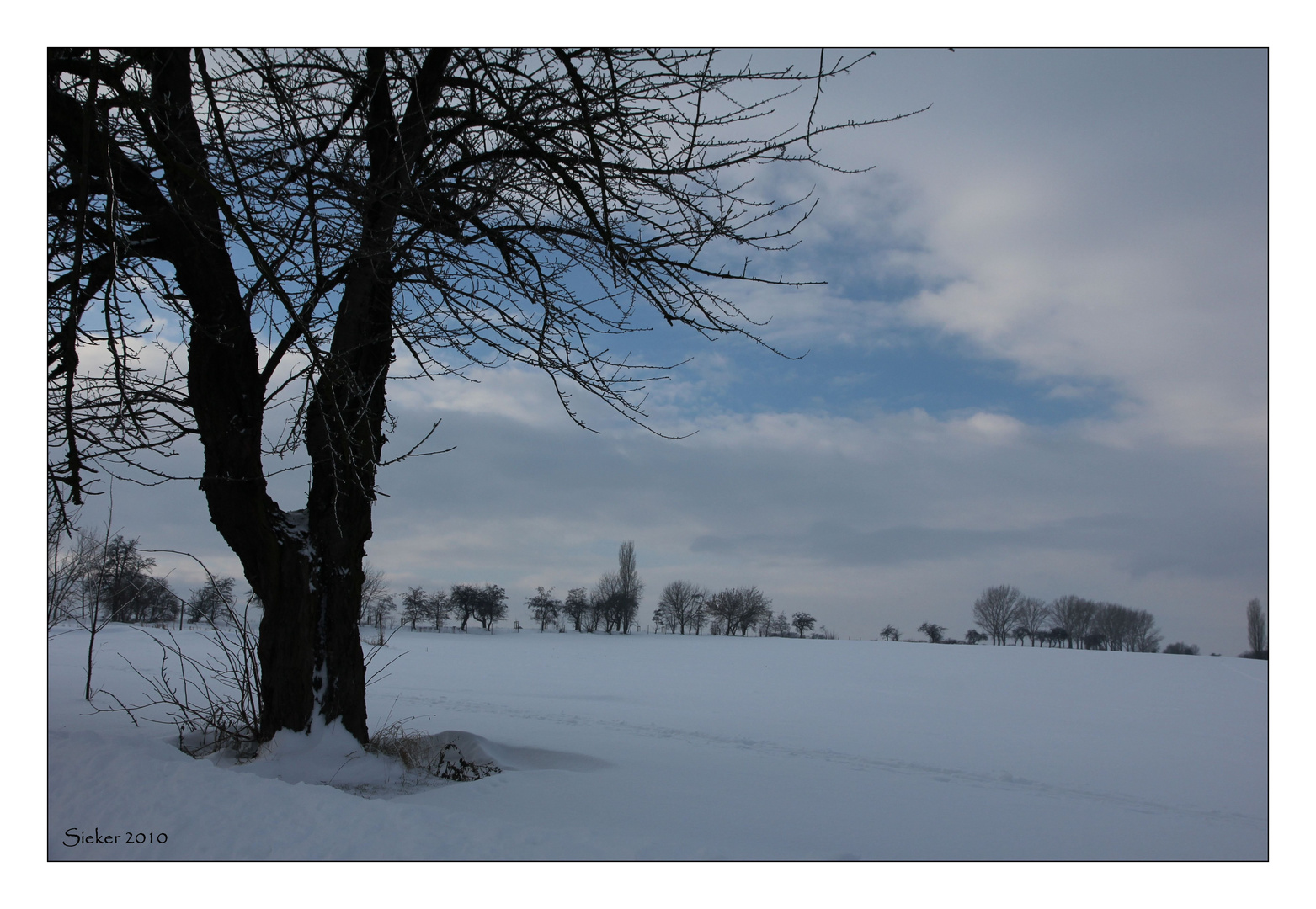 Winterspaziergang ...