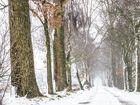 Winterspaziergang 2