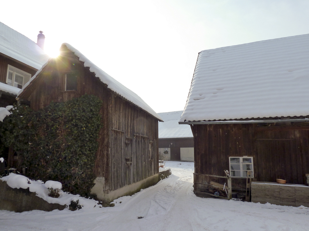 Winterspaziergang (6)